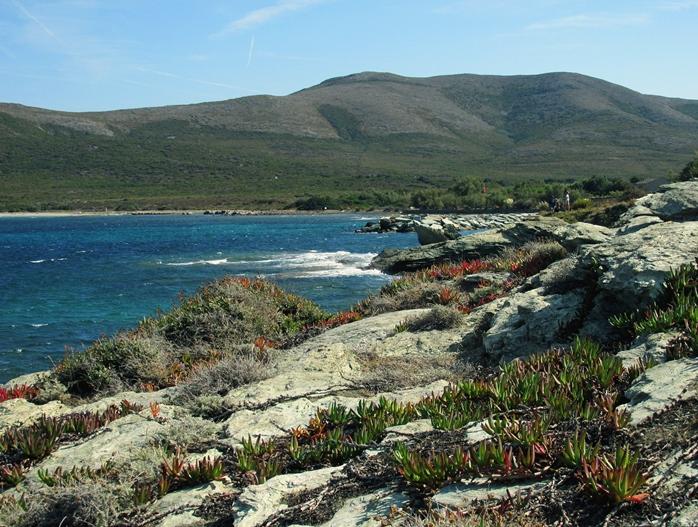 Streifzug durch Korsika VIII