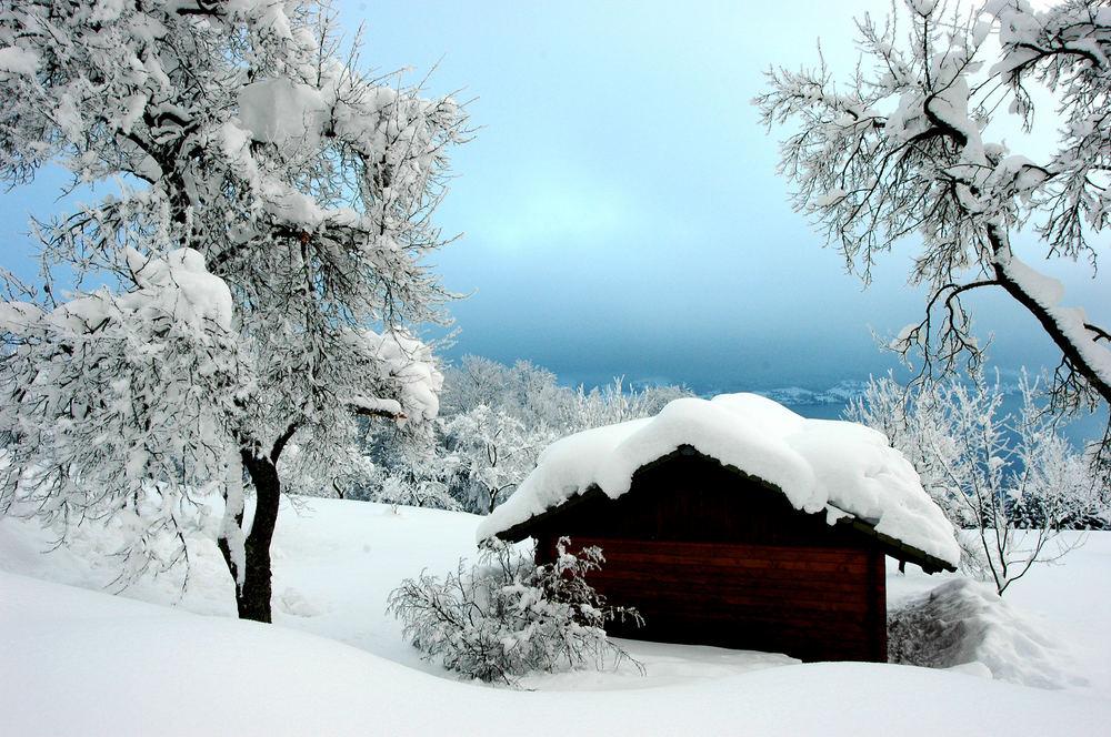 strenger winter...