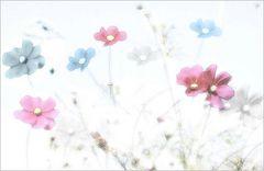 Streublümchen