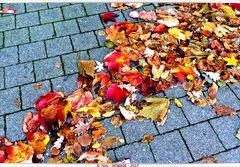 """""""strichweise Herbst"""""""