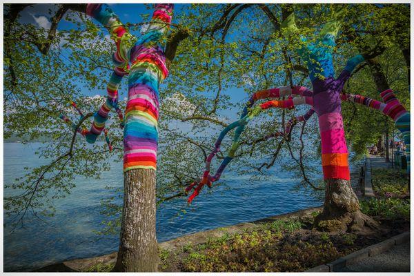 strickbäume