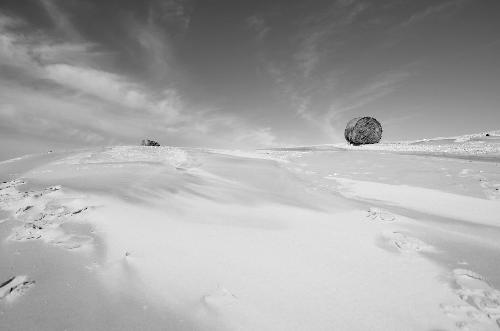 Strohballen in Dünen