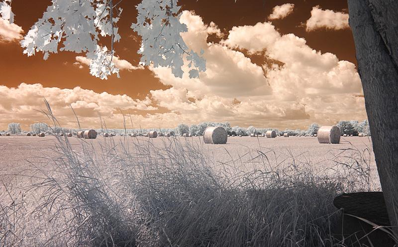 Strohballen in freier Wildbahn