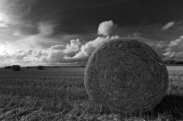 Strohballen in Schwarz-Weiß
