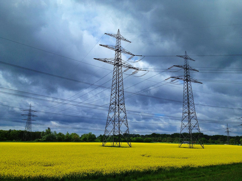Strommasten im Rapsfeld