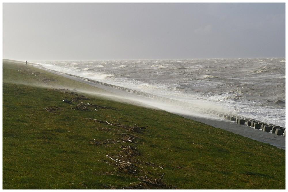 Strurmflutwarnung für Sonntag, den 4.10.2009......