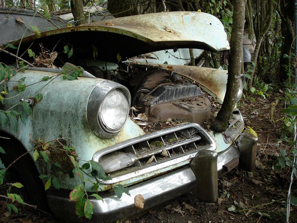Studebaker Champion Regal 1954 eats tree