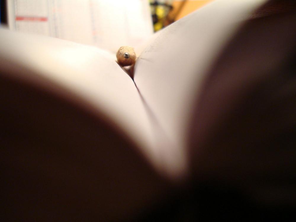 studio troppo noioso