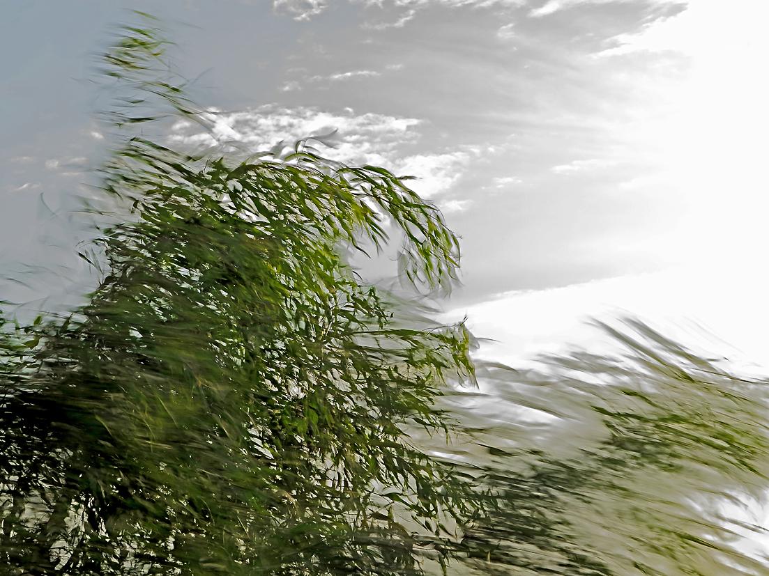 Stürmische Tage: Scirocco / Giorni burrascosi: scirocco (3)