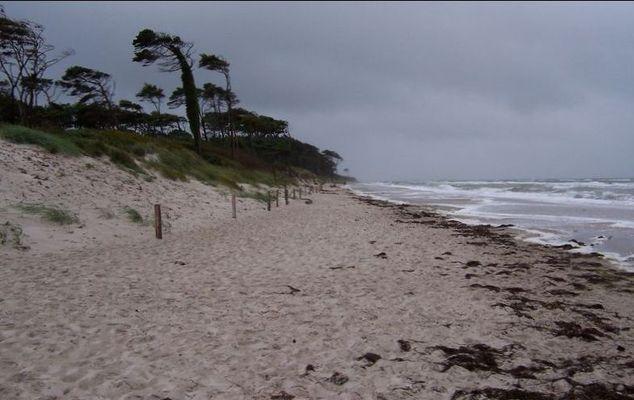 Stürmische Westküste2