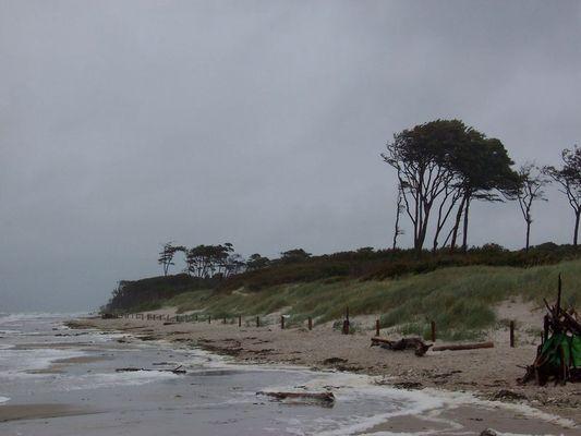 Stürmischer Strandspaziergang mitten im Hochsommer