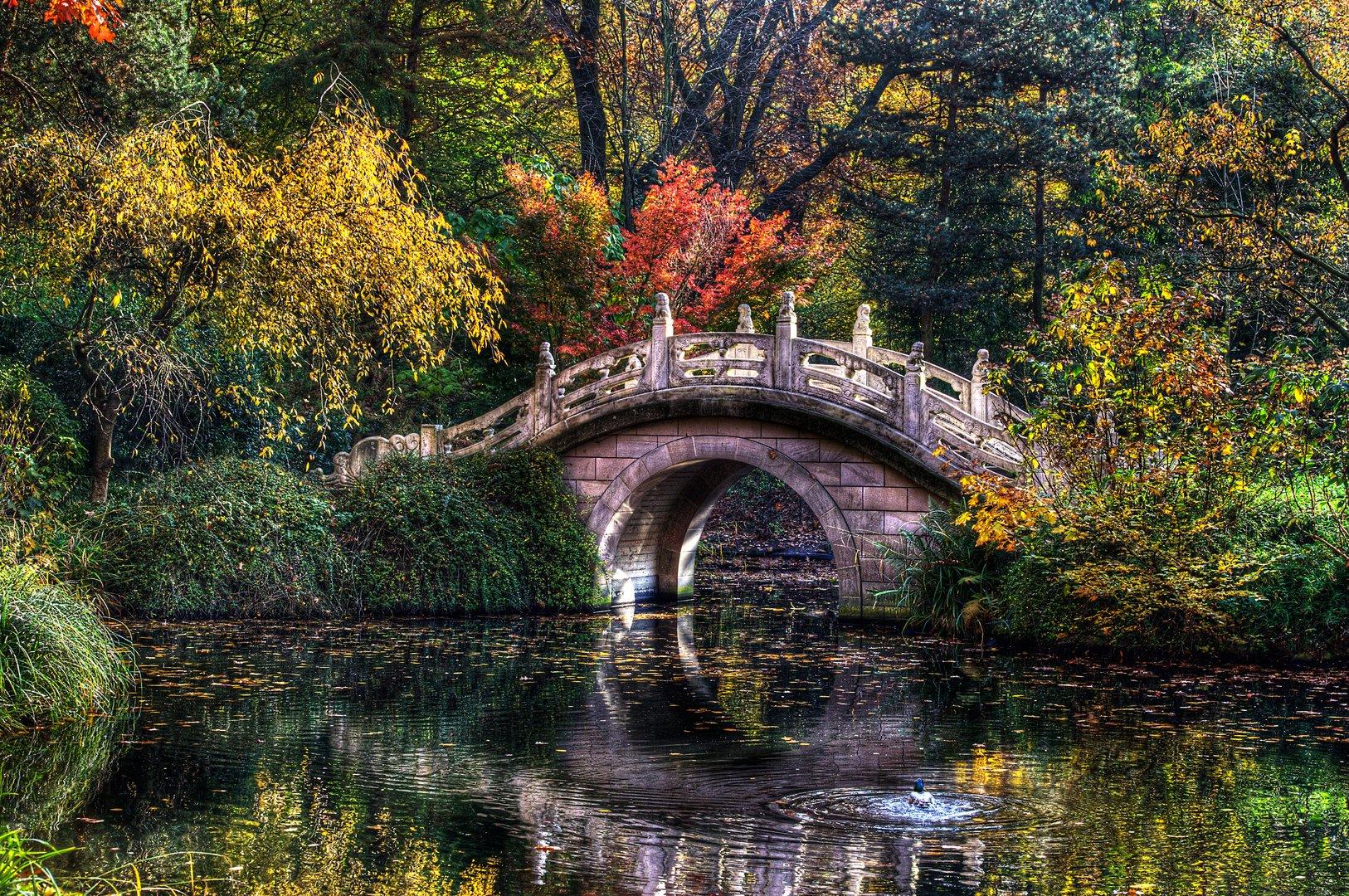 """""""Stufen der Weisheit"""" im Chinesischen Garten ...."""