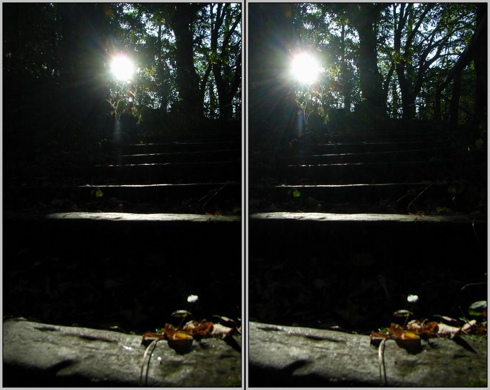Stufen ins Licht 3D