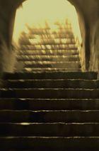 Stufen zum Licht