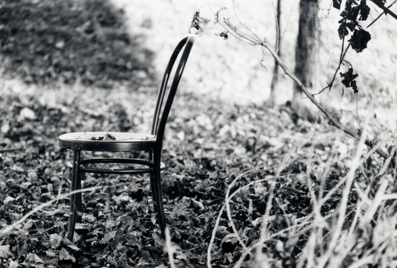 Stuhl im Wald