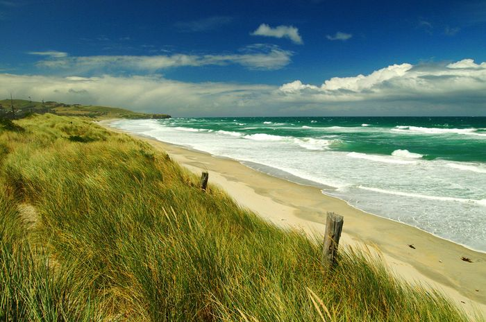 Sturm bei Dunedin