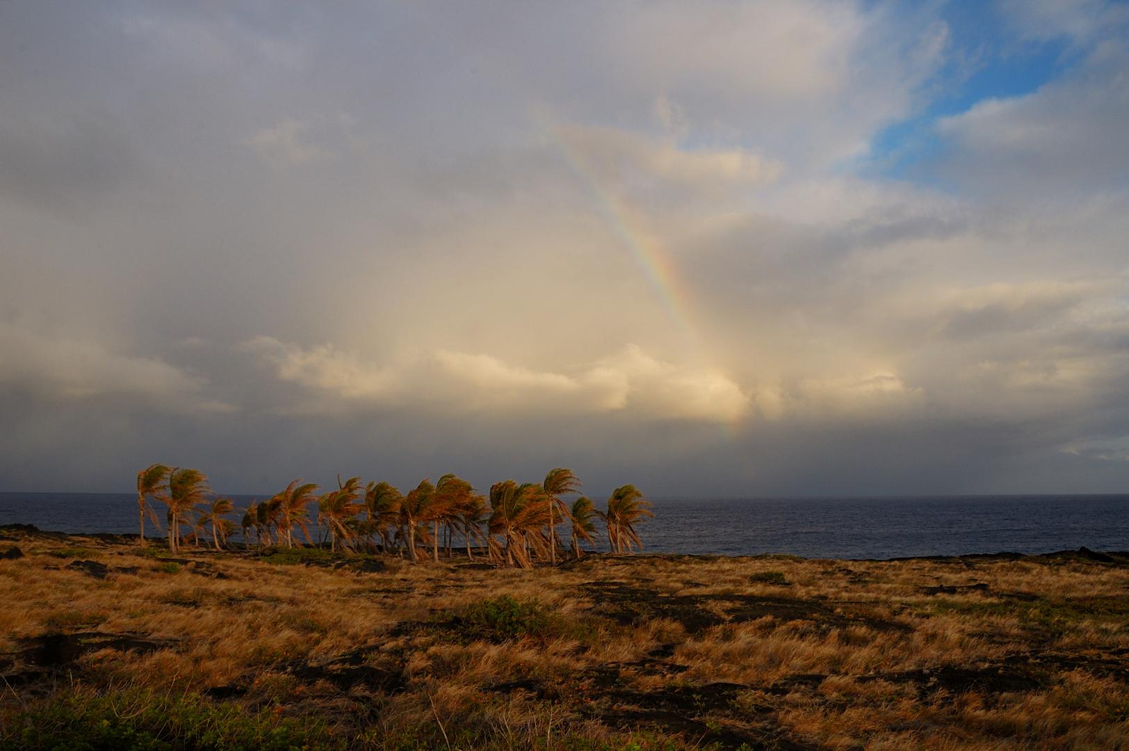 Sturm, Regen, Sonnen ... Regenbogen!