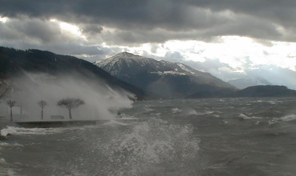 Sturm über dem Zugersee