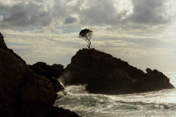 Sturm vor Paguera (Mallorca-Südwestküste)