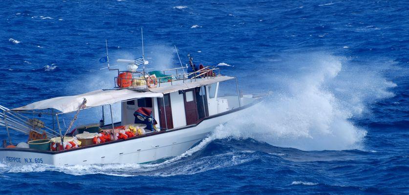 Sturmfischer