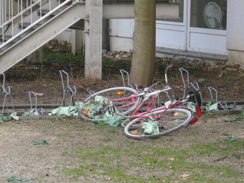 Sturmopfer Bike