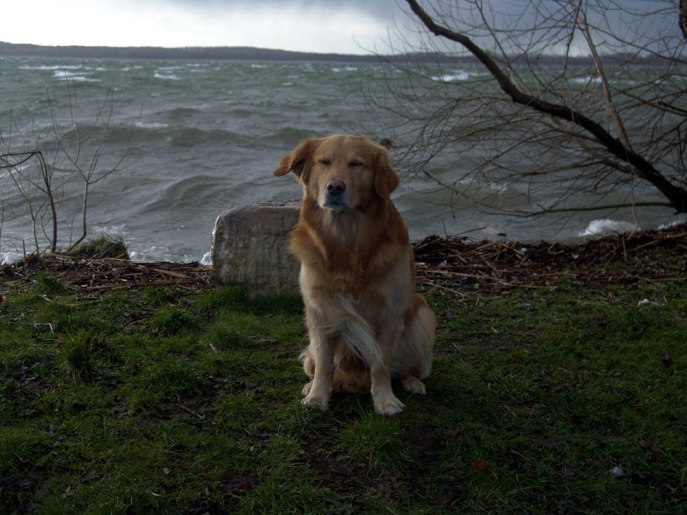 Sturmtief Kirsten fegt über den Schweriner See!