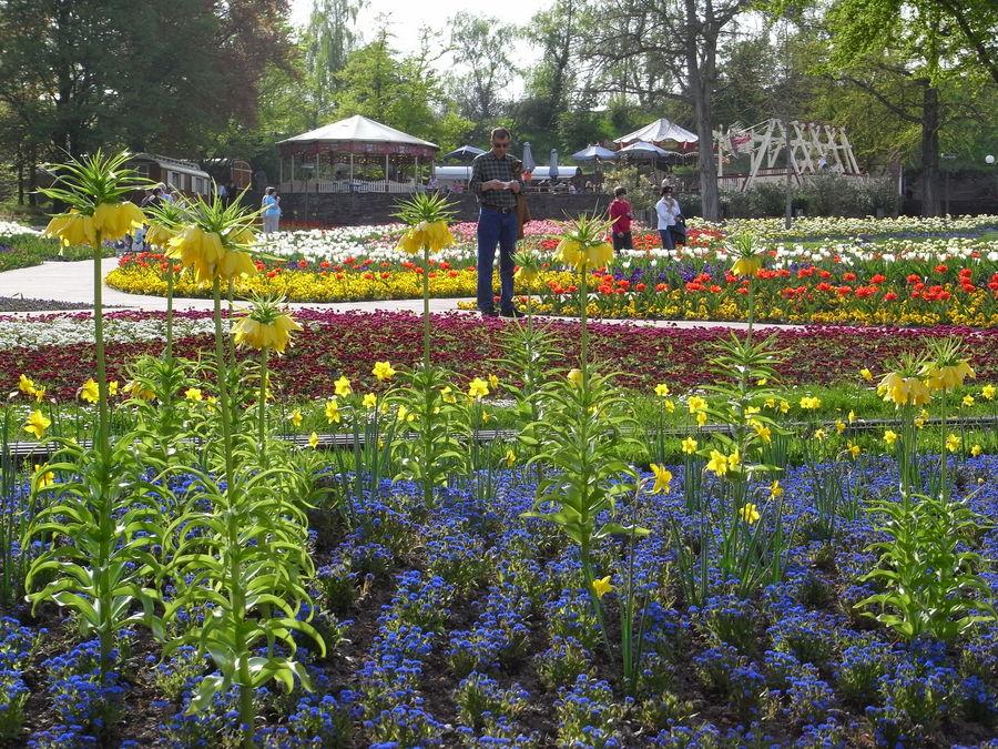 Stuttgart im Frühling 4