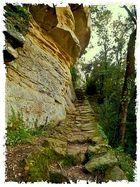 Subida al Santuario Pre Románico de Sant Feliu de Savassona-Osona-Catalunya