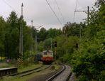 Sudety und ++++ / 31 - Aus dem Wald ...