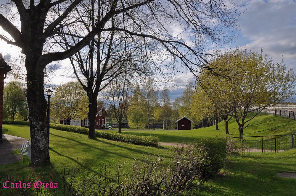 Suecia, Hagförs, Värmland