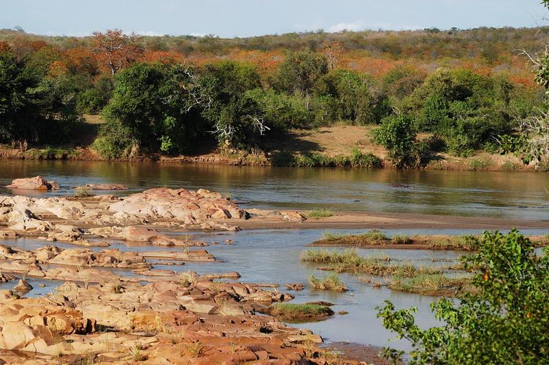 Süd Afrika 2008 - Kruger National Park