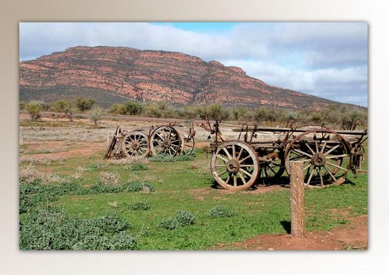 Süd-Australien Wilpena NP