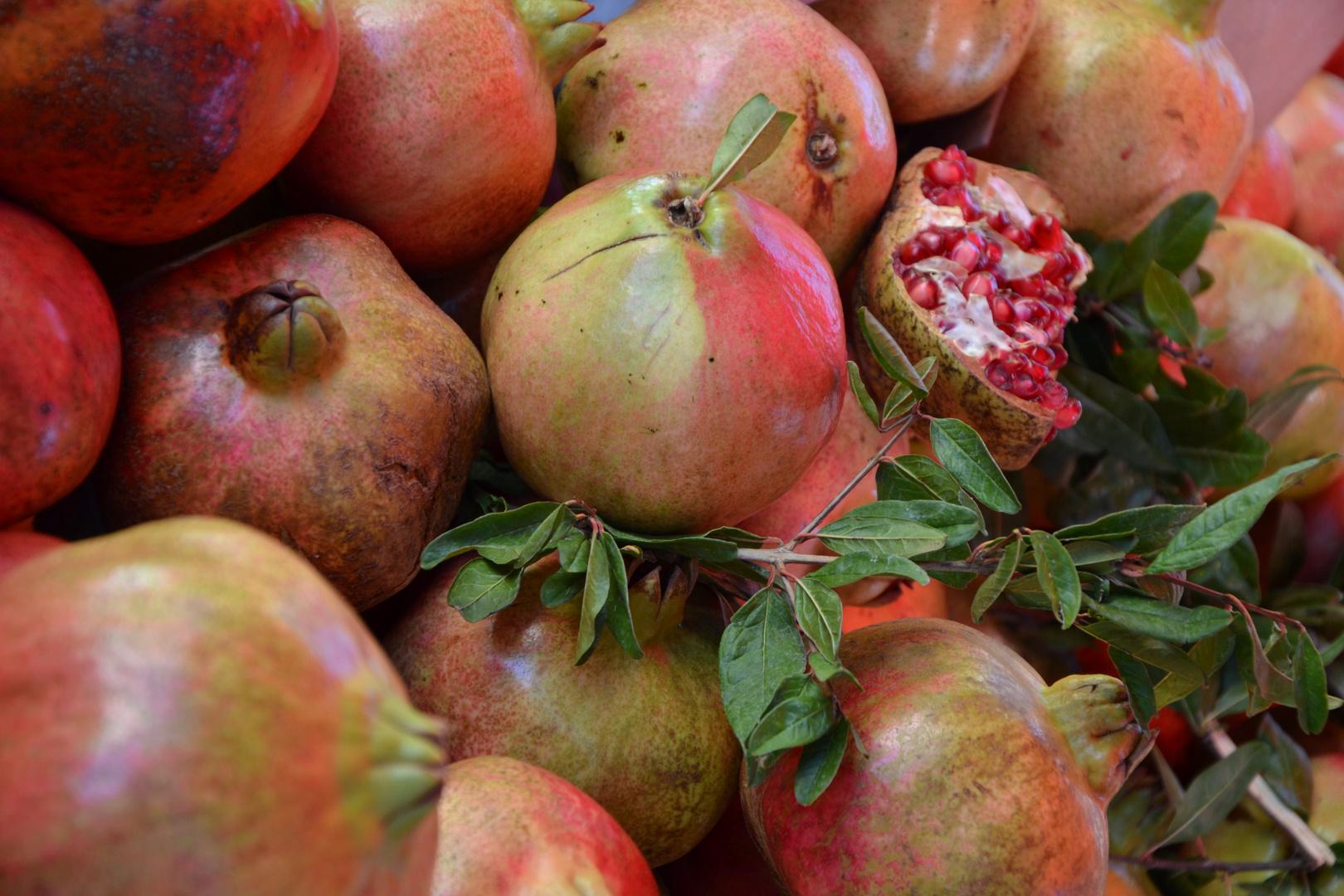 Süd-Früchte
