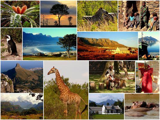 Südafrika 50 (bitte Anmerkung lesen)