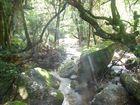 Südafrika Doreen Falls