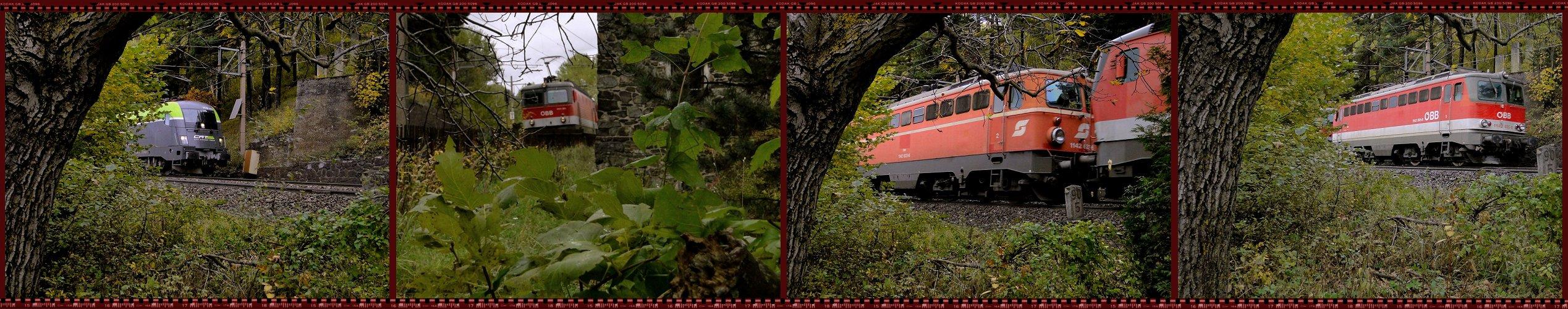 Südbahn-Exkursion 2013 - CK auf der Suche ...