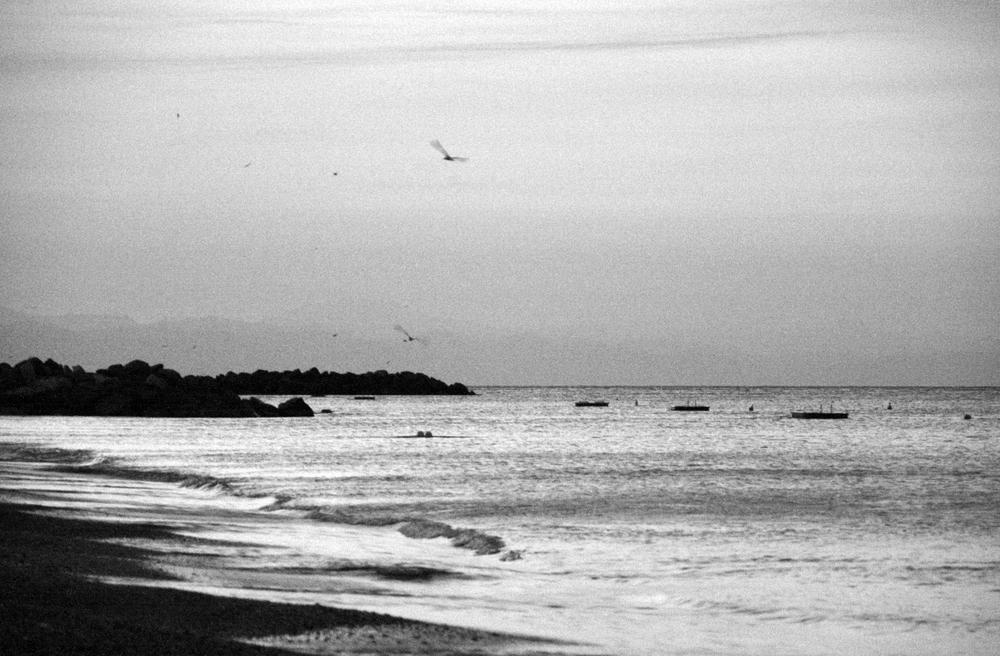 Südfrankreich am Morgen