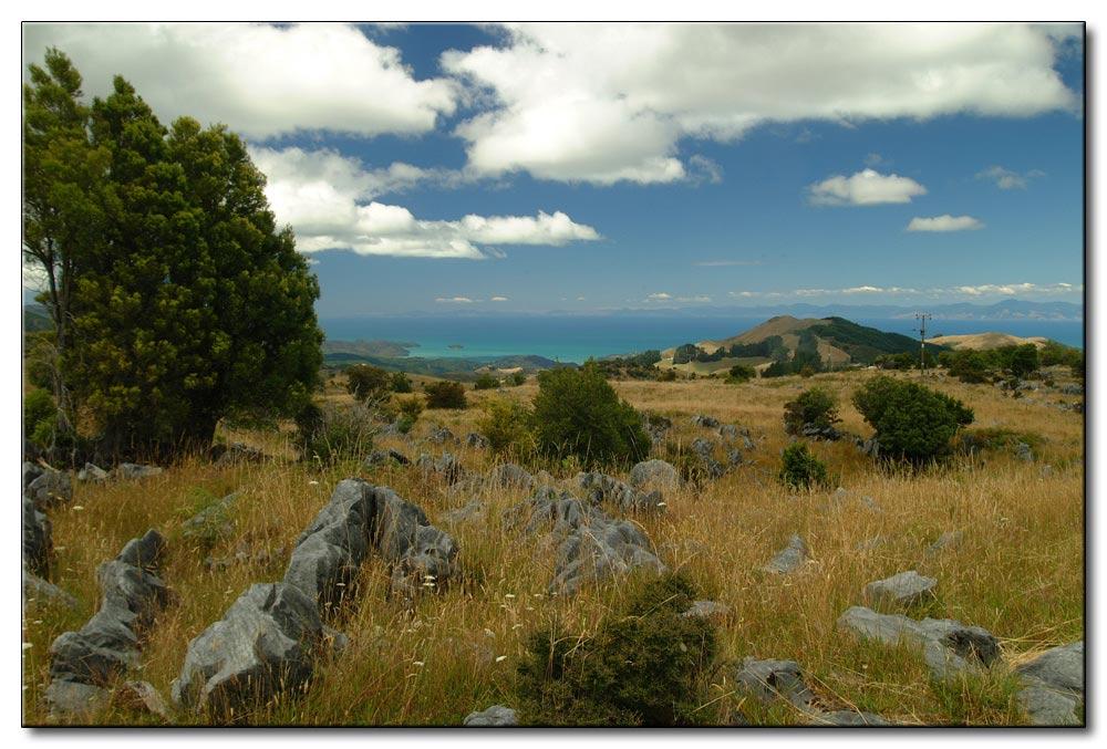 Südinsel mit Blick aufs Meer
