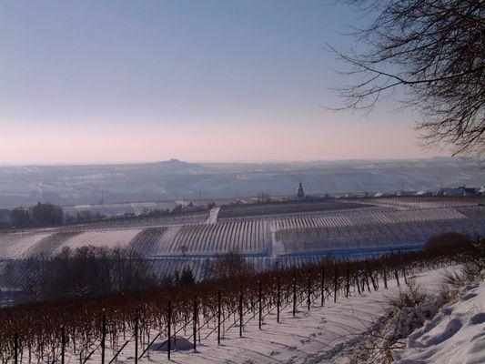 Südliche Weinstrasse -Ein Wintermärchen