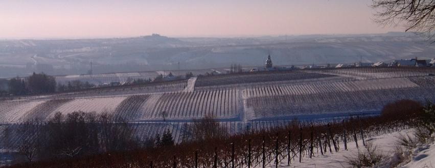 Südliche Weinstrasse-Gleisweiler