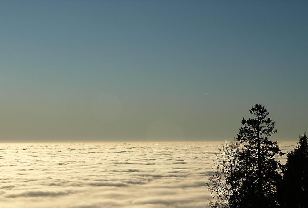 Südsteirisches Nebelmeer