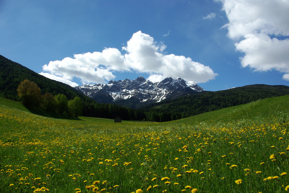 Südtirol, bei Olang