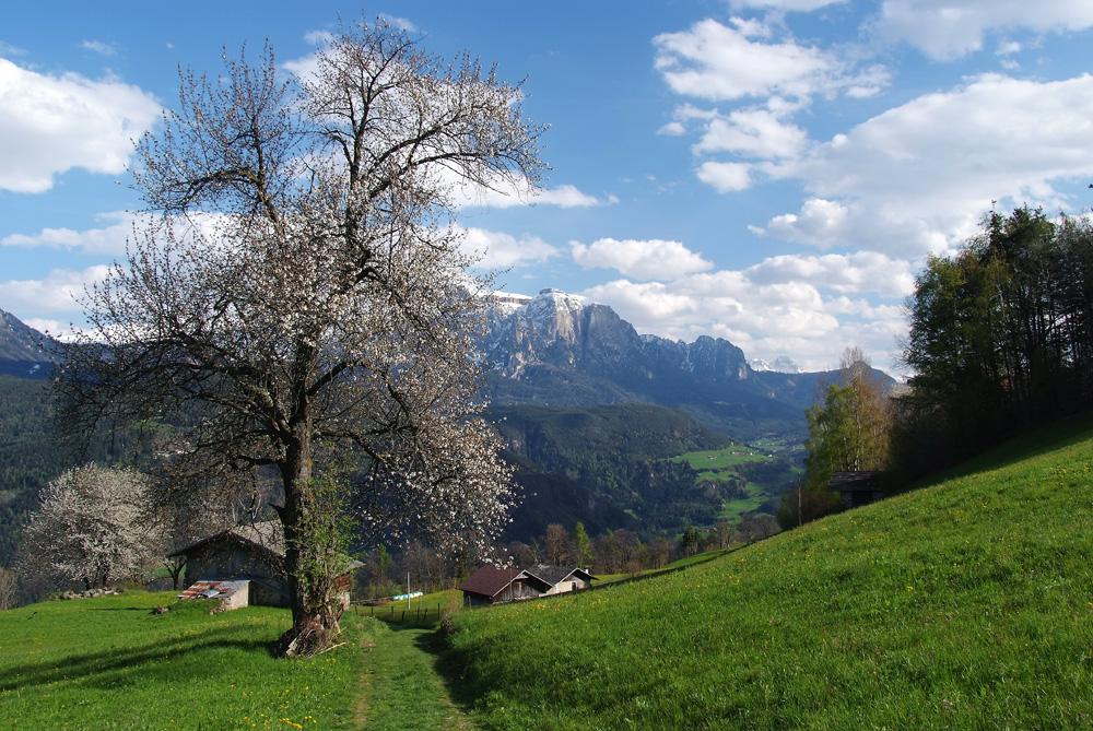Südtirol - Impressionen II