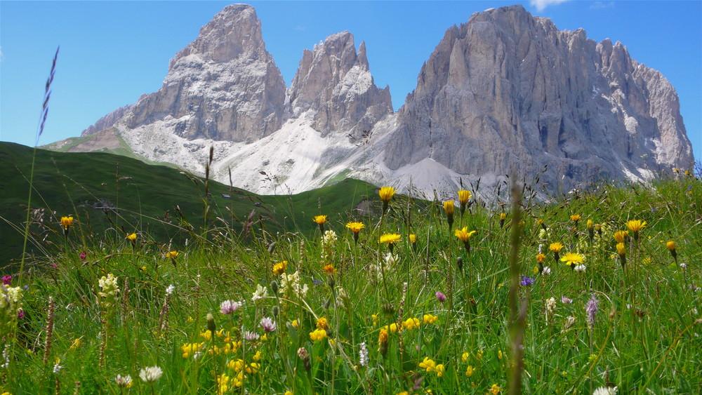 Südtirol; Langkofel