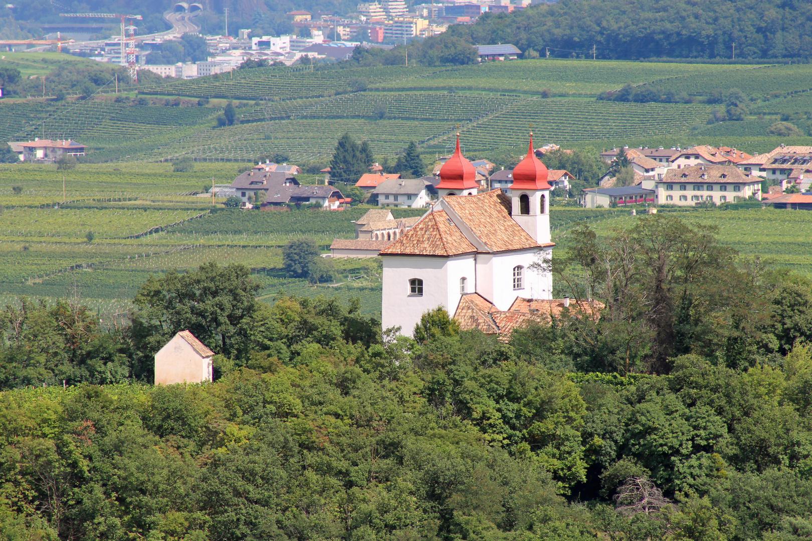 Südtiroler Kirche umgeben von Weinbergen