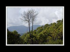 Südwestlich von Kathmandu 02
