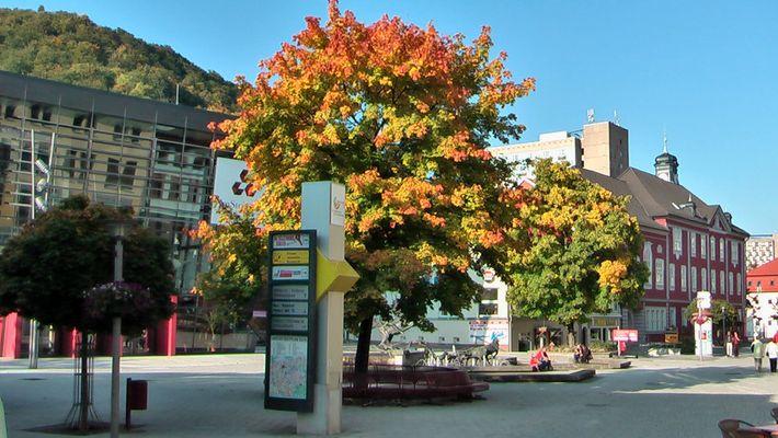 Suhler Herbst - Stadtrundgang 3