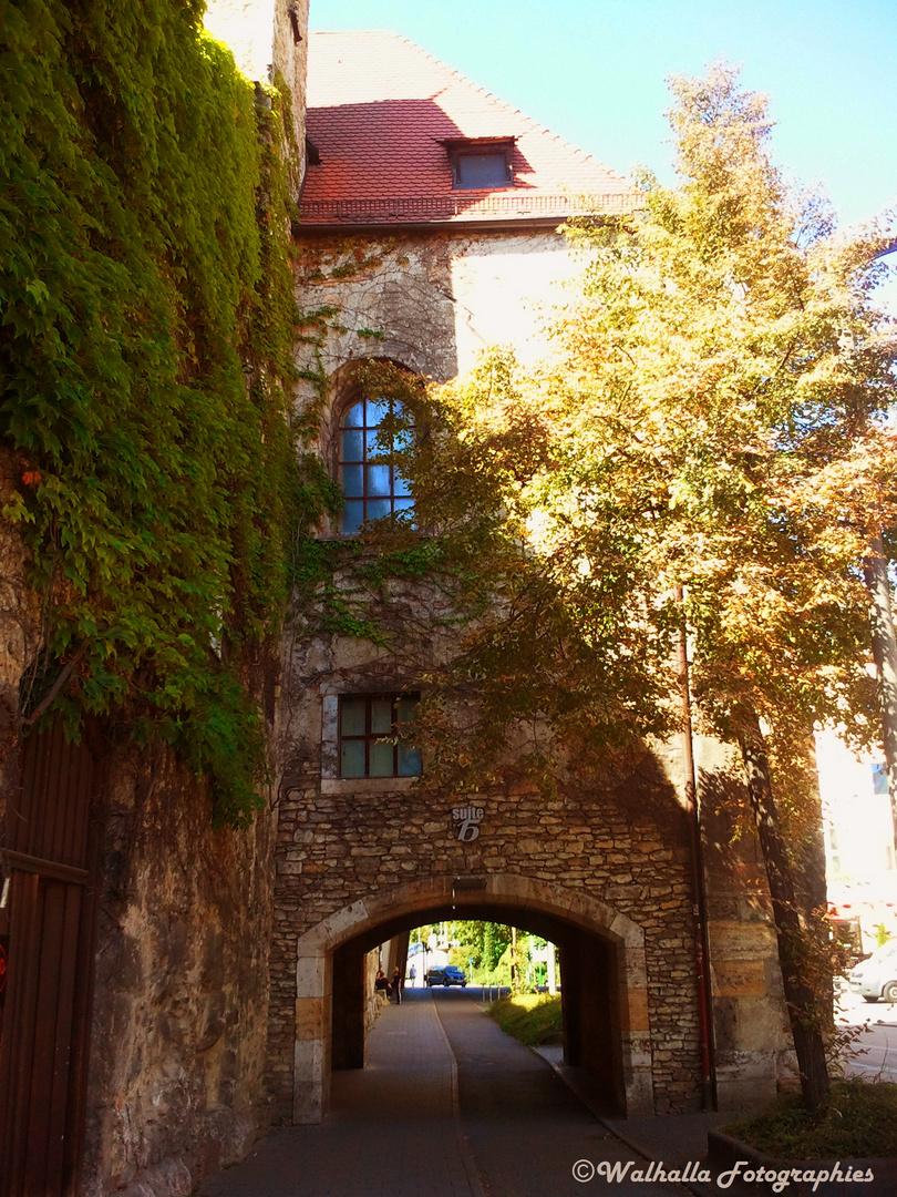 Suite 15 Regensburg