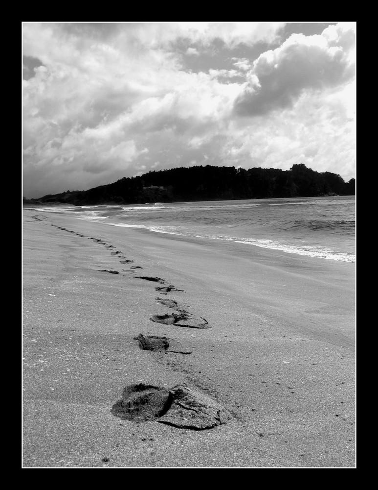 Suivre mes pas
