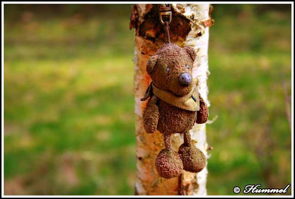 Suizid Teddy